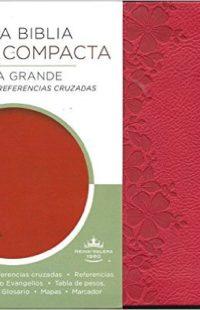 Santa Biblia Edicion Compacta Letra Grande